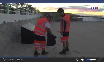 Lutte contre l'incivisme et propreté des plages, l'exemple cannois à l'honneur du JT de TF1