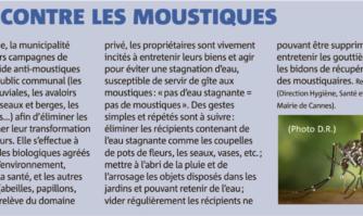 Lutte contre les moustiques à Cannes