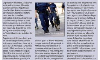 Brigade canine : à Cannes, une police qui a du chien !
