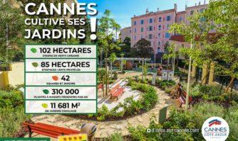 1 arbre pour 2 habitants : la Mairie de Cannes lance la campagne : « Cannes cultive ses jardins et protège ses arbres !»
