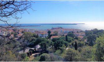 La Mairie de Cannes obtient la 1ère distinction du label «Ville Eco-propre »
