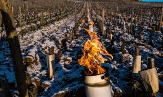 Agriculture : une assurance par capitalisation face aux aléas climatiques et économiques ? Par David Lisnard et Yves D'amécourt